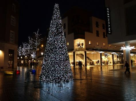 file christmas tree exeter geograph org uk 614378 jpg