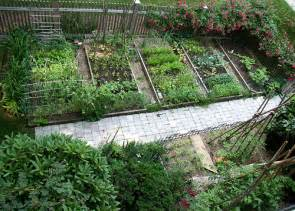Vegetable garden layout plan for efficiency and style