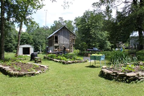 backyard homestead homesteading on the internet homesteading blog