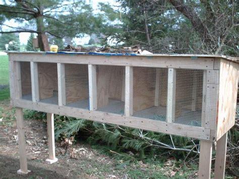 raising quail in your backyard coturnix quail cage plans 2017 2018 best cars reviews
