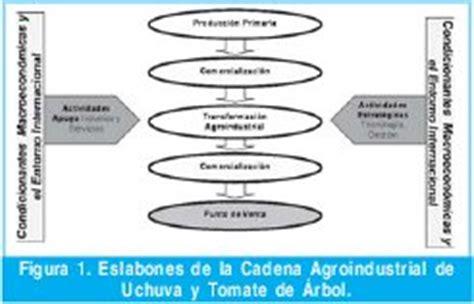 cadena productiva agroindustrial chain of value analisys in uchuva and tamarillos