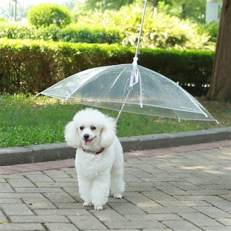 puppy umbrella umbrella reviews all pet cages