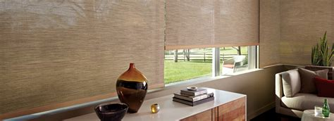 Roller Shade For Patio by Patio Roller Shades Designer Screen Shades Douglas