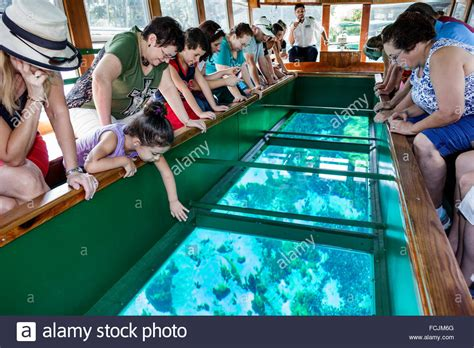 glass bottom boat tours in florida silver springs florida state park silver river glass
