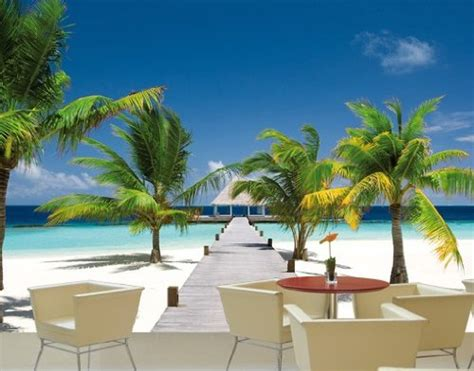 imagenes de paisajes tamaño carta fotomurale con colla no 4 quot paradise bay quot 400x280cm
