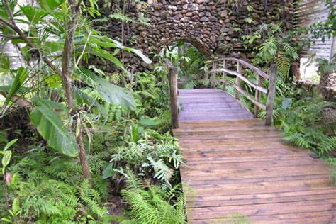 Botanical Gardens Volunteer Where To Volunteer Travel And Study In Belize