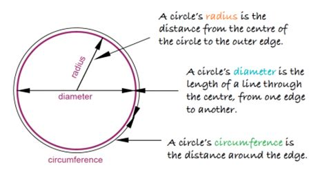 Sections Of A Circle by Circumference Radius And Diameter Explained Circles In