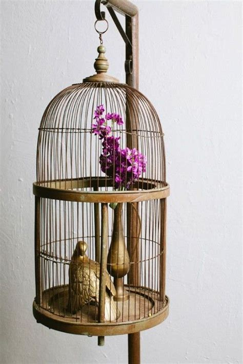 25 best ideas about bird cage decoration on