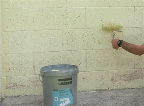 Peindre Un Mur Exterieur 4987 by Peindre Un Mur Ext 233 Rieur En 11 233 Galerie Photos D