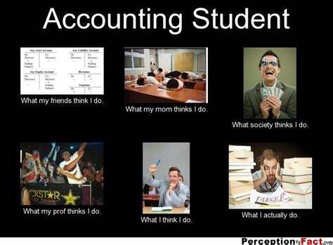 Accounting Memes - 11 best accounting memes images on pinterest cat love