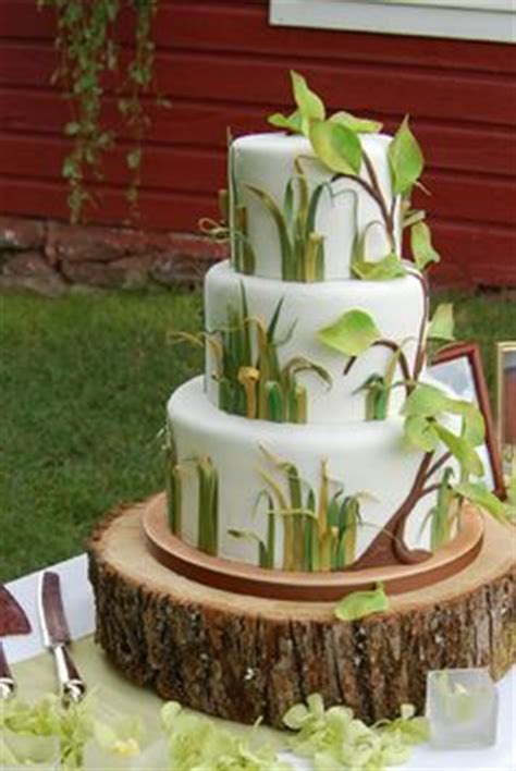 Cakes From Cabin Ridge by 1000 Images About Tinkerbell Birthday On