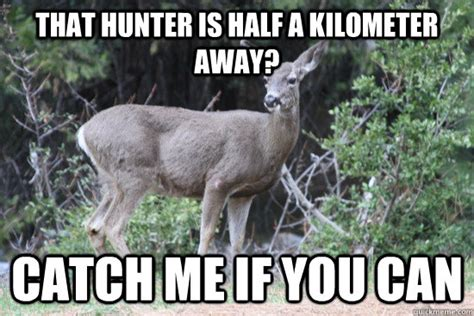 Funny Deer Memes - funny deer hunting memes memes