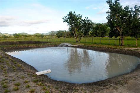 Tambaqui Aquaculture