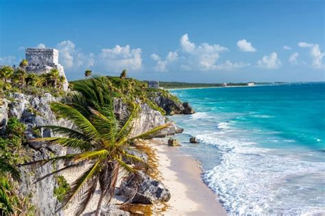 day trip   tulum ruins gran cenote road affair
