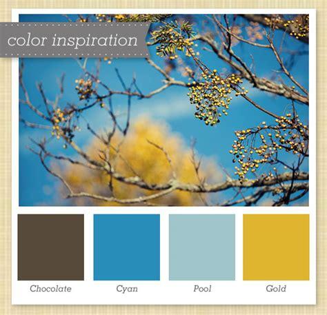 blue yellow color scheme yellow blue color scheme clinic pinterest yellow