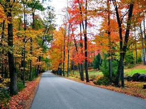 fall colors new new fall foliage road trips travelchannel