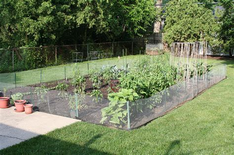 Fabulous Fences: DIY Vegetable Garden Fence