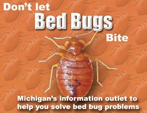 what dont bed bugs like emerging disease issues don t let bed bugs bite