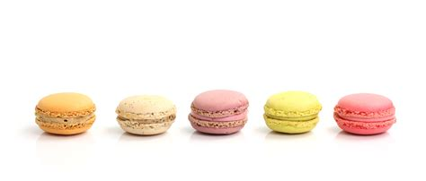 macarons related keywords suggestions macarons