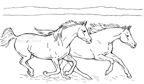 coloring pictures of dogs and horses horse drawings