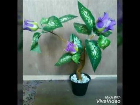 bunga hias  akar pohon youtube