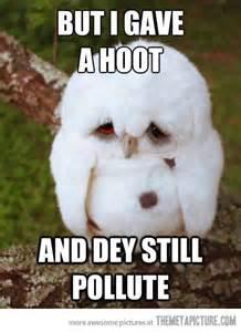 White Owl Meme - funny sad owl meme white