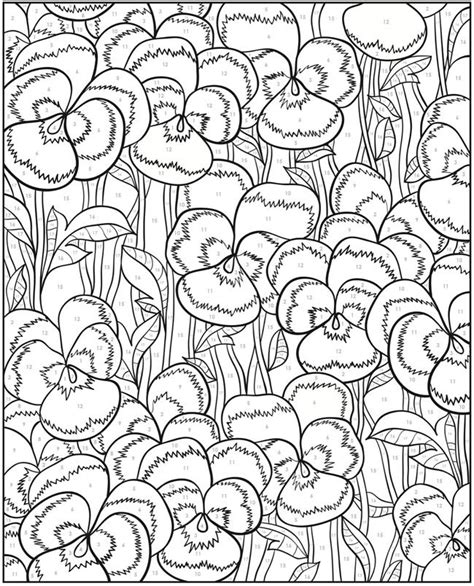 Pdf Creative Birds Number Coloring by Welcome To Dover Publications Creative Floral Design