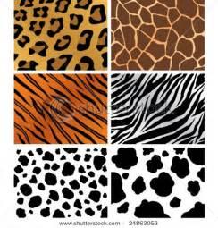 Animal Pattern Artwork | animal patterns school art projects pinterest