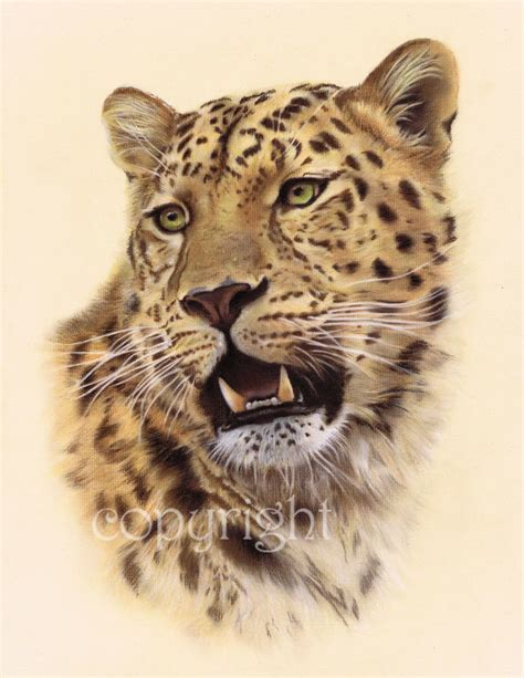 leopard head pictures to pin on pinterest pinsdaddy