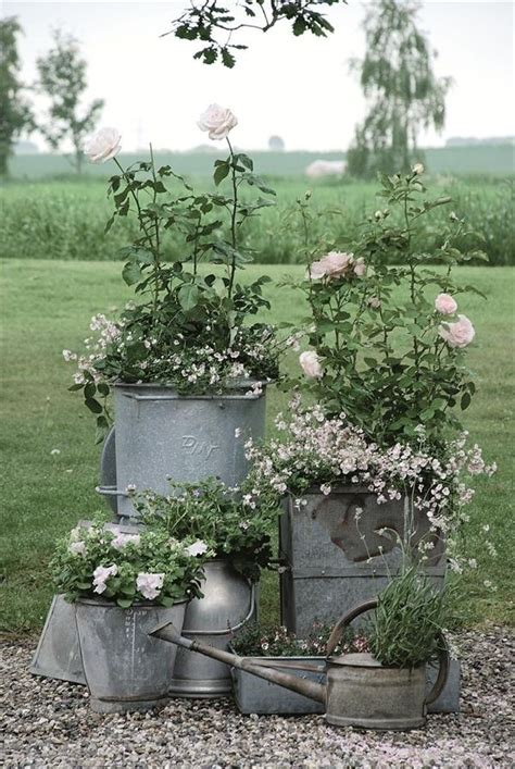 Galvanised Planters For Garden by Galvanized Planters Garden Space
