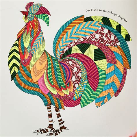 colouring books for adults animal kingdom millie marotta tinadayo