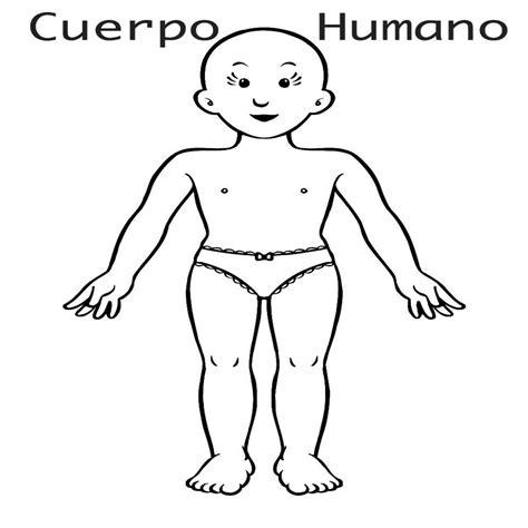 imagenes educativas cuerpo humano nuevo dibujos infantiles para colorear sobre el cuerpo humano