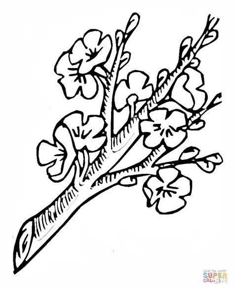 rami di fiori da colorare disegno di ramo in fiore da colorare disegni da colorare