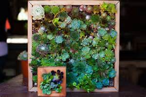 Vertical Garden Indoor Diy Craftionary