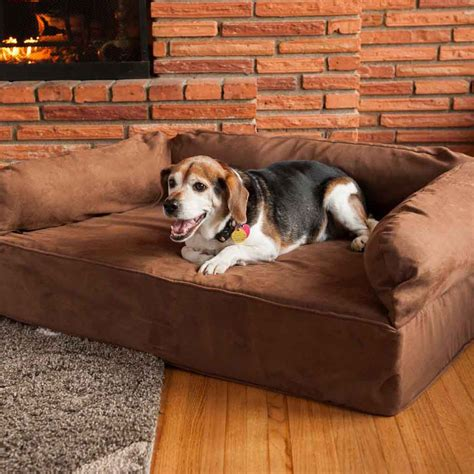pet settee snoozer luxury dog sofa with memory foam pet couch
