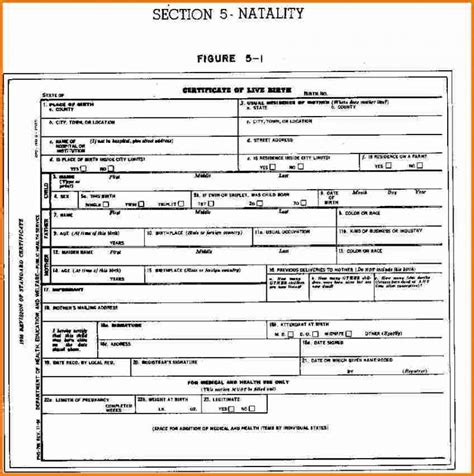 full birth certificate for job blank birth certificate template business