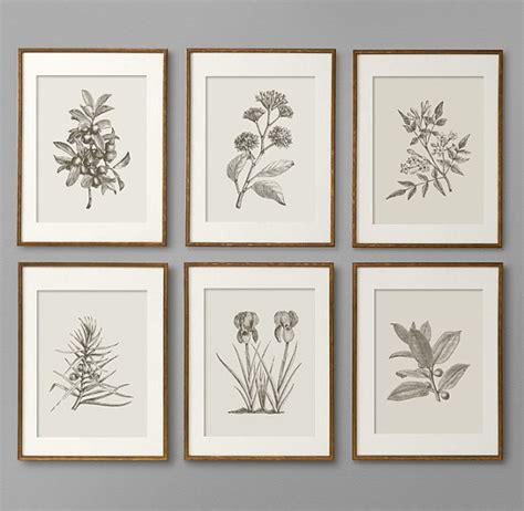 libro instant wall art botanical botanical prints botanical print set botanical art