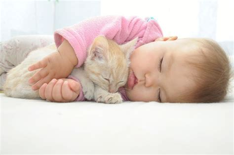 Paket Baby Bedding Sleep Cat why are babies so