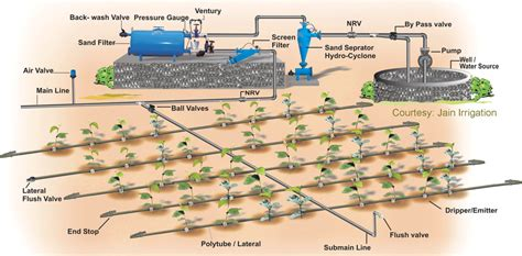 design and layout of drip irrigation system drip irrigation system phoolbari a garden फ लब र एक