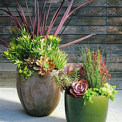 Big Plant Pot Best 25 Large Plant Pots Ideas On Large