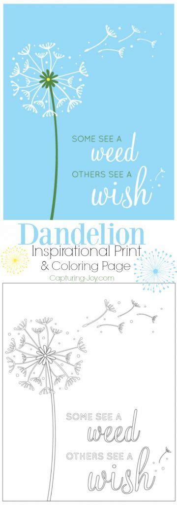 dandelion color dandelion inspirational print and coloring page