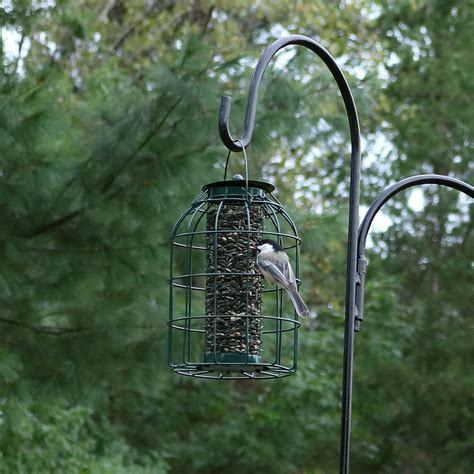 sunnydaze outdoor green wire squirrel proof cage hanging