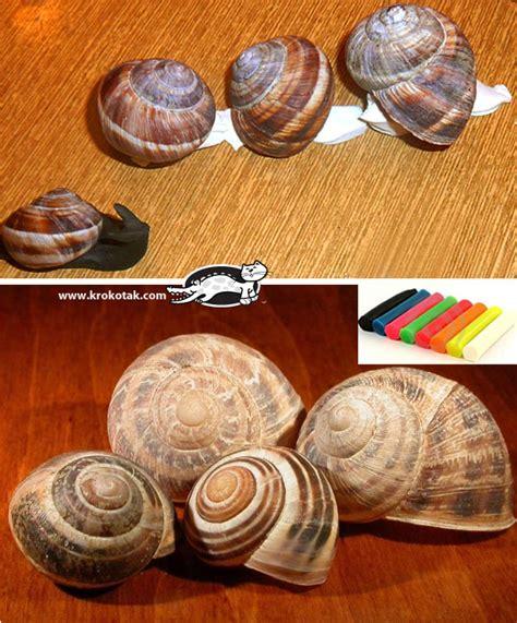 Halloween Decorations Made At Home krokotak snail shell craft