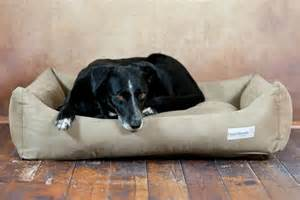 hunde betten orthop 228 dische hundebetten classics