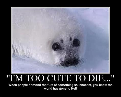 Harp Meme - save the harp seals by iceythorlover432 on deviantart