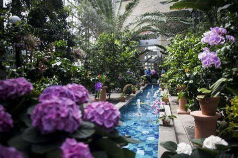 Dc Botanical Gardens Hours 36 Hours In Washington D C The New York Times