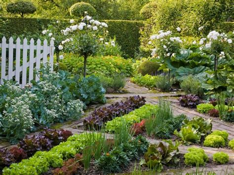 fruit and vegetable garden ideas 668 best images about beautiful vegetable gardens on