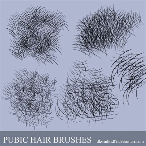 why is the texture of pubuc hair different photoshop pubic hair brush 蕾丝花纹和花边装饰ps笔刷 photoshop笔刷 设计原