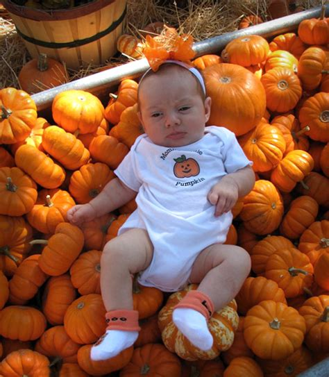 Baby Fall 2008 by Pumpkin Patch Fall Inspiration Living Locurto