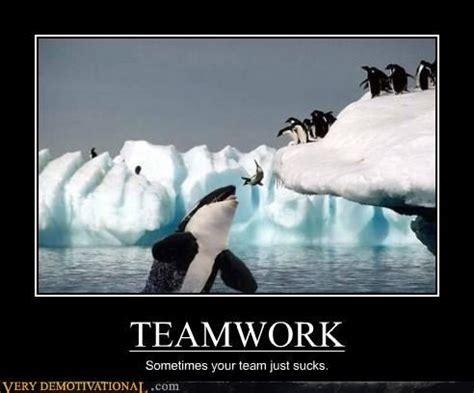 Teamwork Memes - penguin teamwork quotes quotesgram